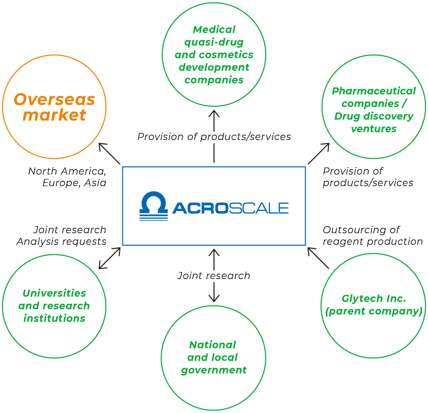 ACROSCALE Provision of products/services(Medical quasi-drug and cosmetics development companies,Pharmaceutical companies / Drug discovery ventures), Outsourcing of reagent production(Glytech Inc.(parent company)), Joint research(National and local government), Joint research Analysis requests(Universities and research institutions), Overseas market(North America, Europe, Asia)