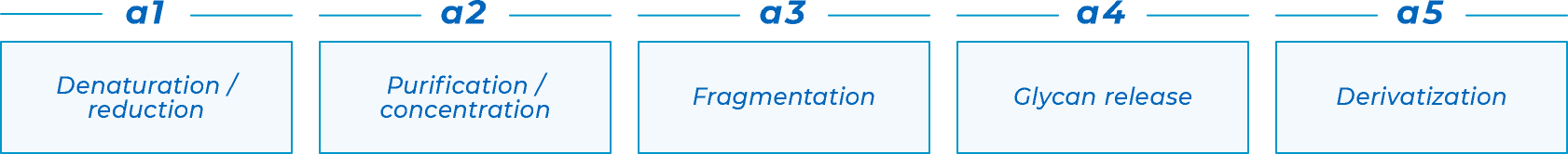 a1.Denaturation / reduction a2.Purification / concentration a3.Fragmentation a4.Glycan release a5.Derivatization